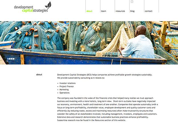 Development Capital Strategies, Tronvig Group