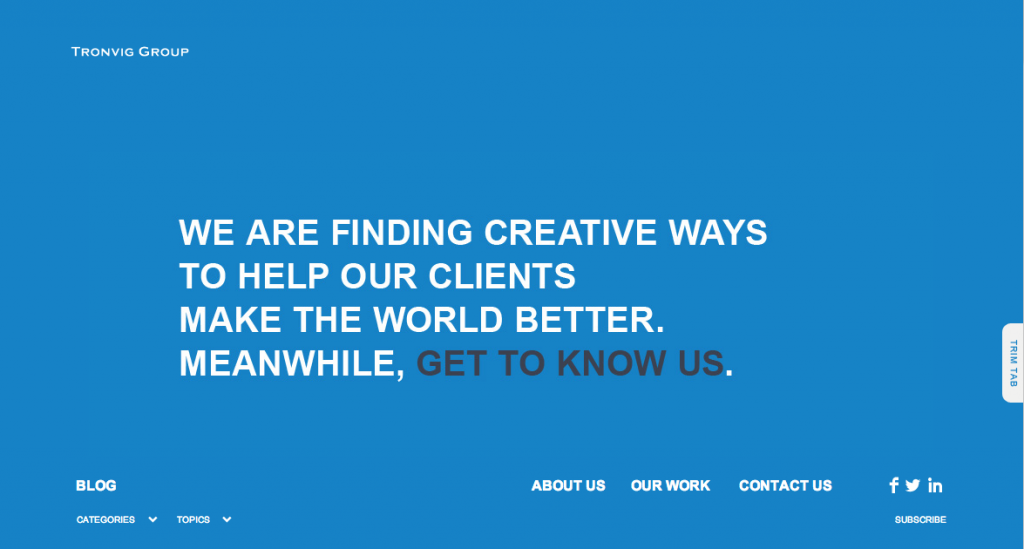 New Tronvig Group Website