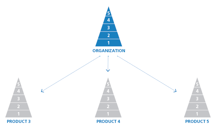 Product-level Brand Strategy